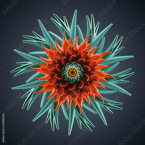 Fototapete 3d Abstract Organic Flower Coral Star Shape