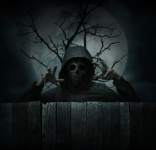 Fototapete - Human skull in jacket standing over dead tree, full moon and cloudy sky, Halloween mystery concept