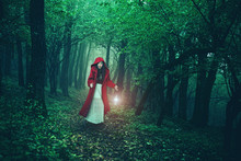 Fototapete - Little Red Riding Hood in the woods