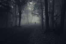 Fototapete - dark forest with spooky man walking on a path