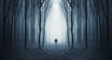 Fototapete - man in a dark forest